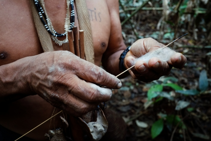 Atalaia du Norde, Amazonia / Brazil - FEB 02 2016:Tribal elder Binan Tukum hunting with his son for monkeys in the rainforest